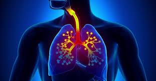 ejercicios de respiracion beneficios