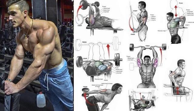 ejercicios para triceps aumentar masa muscular