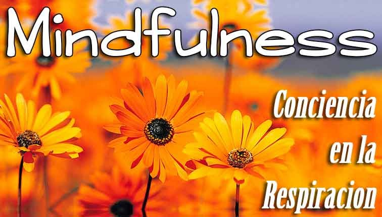 ejercicios mindfulness ansiedad