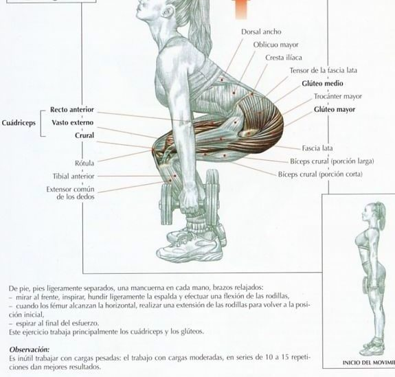 ejercicios para gluteos e isquiotibiales