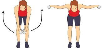 cuantos ejercicios de espalda debo hacer