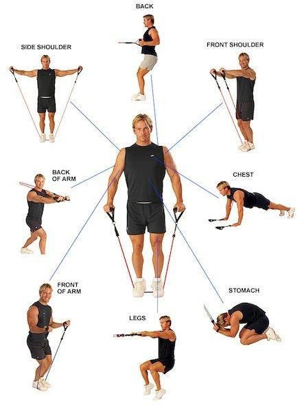 ejercicios con gomas de resistencia
