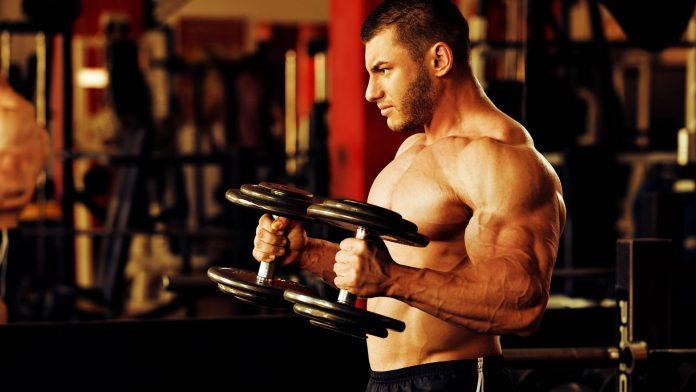 ejercicios de brazos y antebrazos