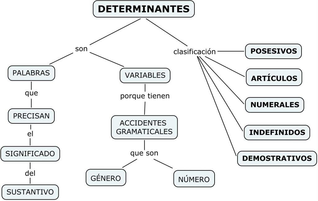 ejercicios de determinantes lengua castellana
