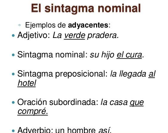 ejercicios de sintagma nominal con respuestas