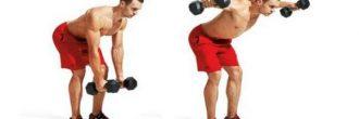 Manguito rotador ejercicios