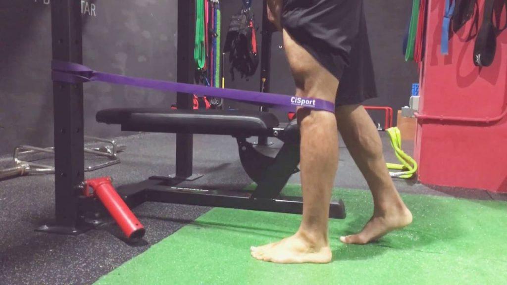 ejercicios vasto interno y externo