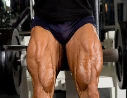 ejercicios vasto interno rodilla