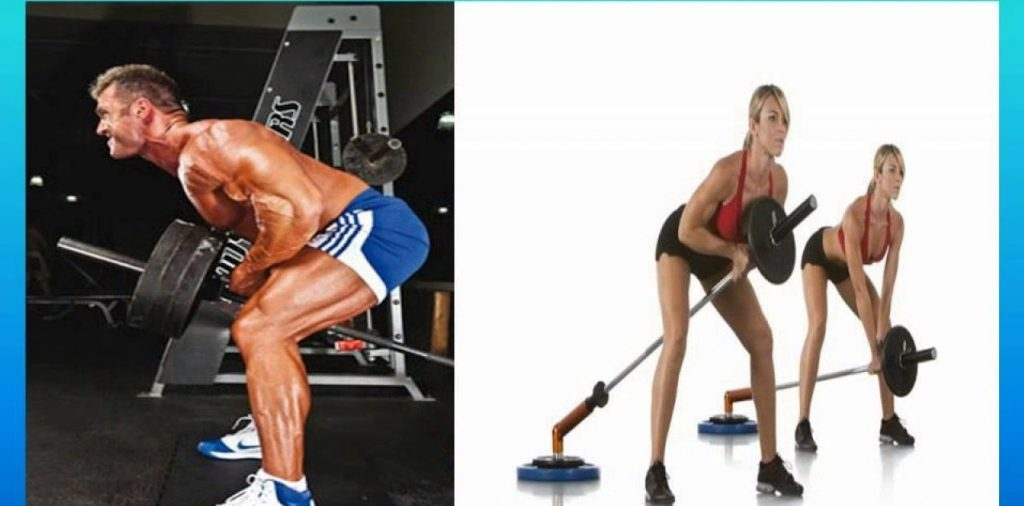 ejercicios de dorsales en gimnasio