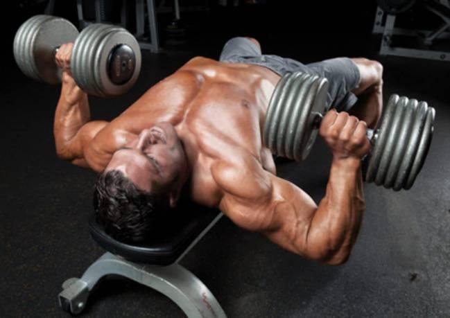 ejercicios multiarticulares para torso