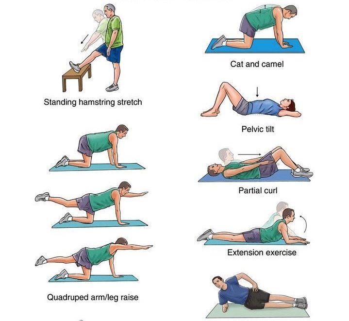 ejercicios para escoliosis fisioterapia