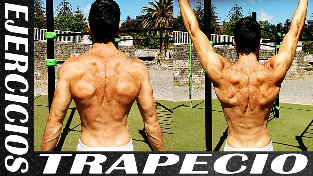 ejercicios para trapecios
