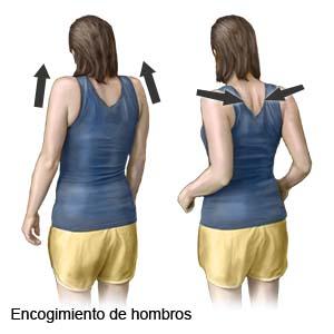 sermef ejercicios de hombro