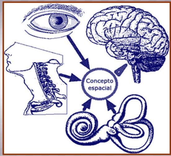 mareos de cervicales sintomas