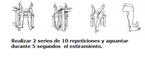sermef programa ejercicios