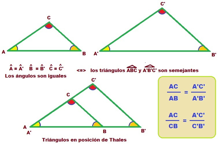 ejercicios basicos de teorema de thales